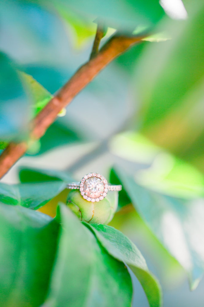 Francini & Brandon Mead Gardens Engagement Session | Katelynn Carlson Photography